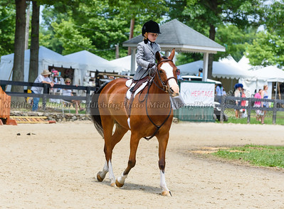 Upperville Saturday-672