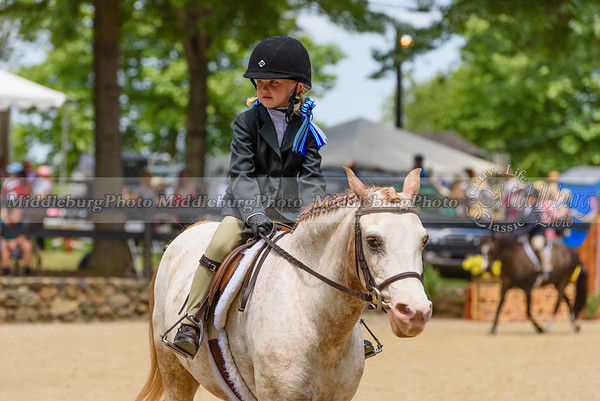 Upperville Saturday-687