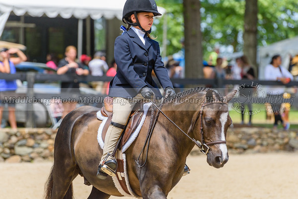Upperville Saturday-690