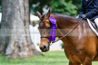 Upperville Saturday-849
