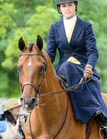 Ladies' Side Saddle Under Saddle Class