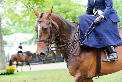 Ladies' Side Saddle Under Saddle Class