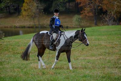 Virginia Field Hunter Champpioniships-15