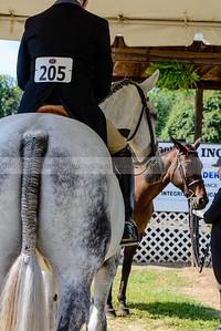Warrenton Horse Show-4