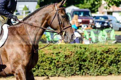 Warrenton Horse Show-31