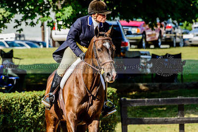 Warrenton Horse Show-27