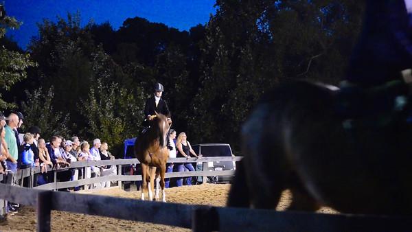 Warrenton Horse Show-294