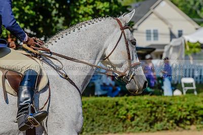 Warrenton Horse Show-22