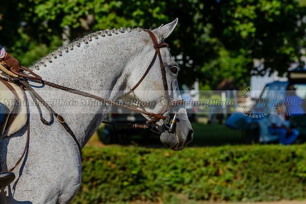 Warrenton Horse Show-23