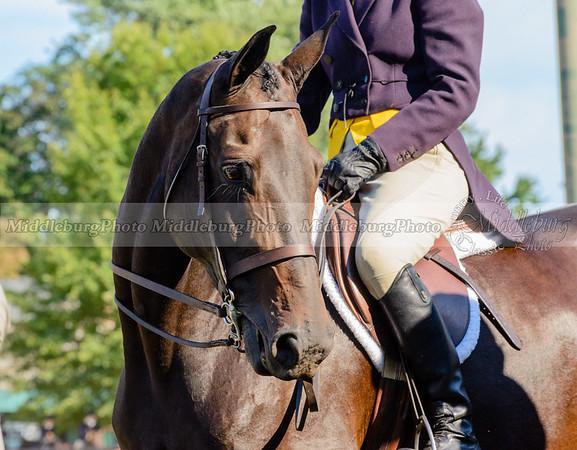 Warrenton Horse Show-44