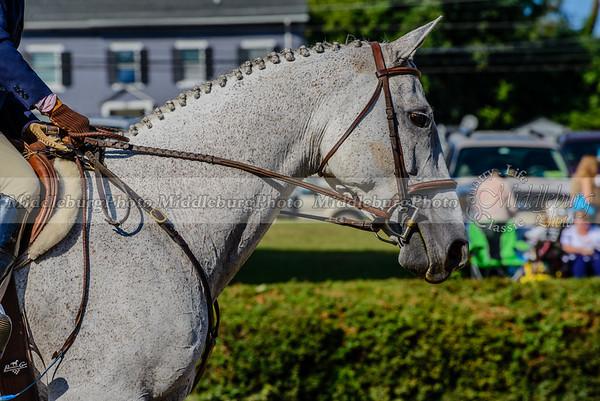 Warrenton Horse Show-19