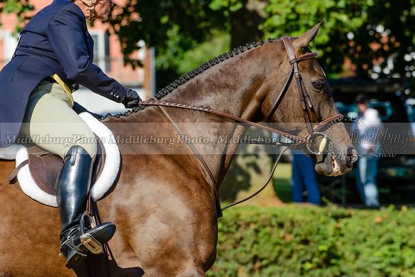 Warrenton Horse Show-33