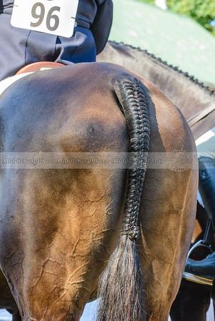 Warrenton Horse Show-48