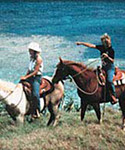 Horseback Riding on Kauai