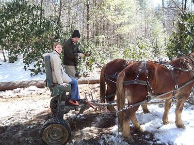Buckeye Branch Horselogging