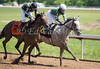 Ching Cha Ching with Lori Wydick (white cap) outduels Tie Dye and Perry Ouzts to win the 5th race at Belterra Park. 06.14.2014