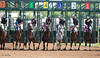 Eventual winner, Citizen John with Perry Ouzts (pink cap) at the break of the 2nd race at Belterra Park. 06.14.2014