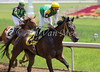 Chateau Thierry with Victor Ballon (yellow cap) ran second in the 1st race at Belterra Park. 06.14.2014