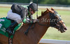 Charismatic Pulpit with Perry Ouzts up wins the 7th race at Belterra Park. 07.04.2014