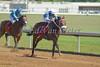 Cat's Best with Gabriel Lagunes up wins the 4th race at Belterra Park. 07.04.2014