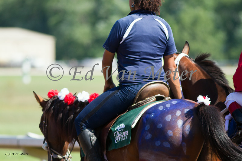 The 4th of july horsse at Belterra Park. 07.04.2014