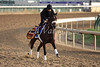 Biondetti works in preparation for The Breeders' Cup at Churchill Downs. 11.02.2010.<br /> photo Ed Van Meter