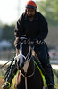 Black Onyx, Kentucky Derby contender at Churchill Downs. 05.01.2013