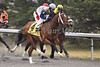 Eventual winner, Timeless Fashion with James Lopez up pass the stands for the first time in The Tejano Run Stakes at Turfway Park. 03.13.2010