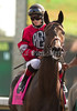 Came To Believe with Rosie Napravnik up in the post parade of the 5th race at Keeneland. 10.04.2013