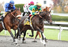 Atlantic Titan with Jon Court (yellow cap) and Street Serenade with James Graham (blue cap) at the start of the 3rd race at Keeneland. 10.20.2012
