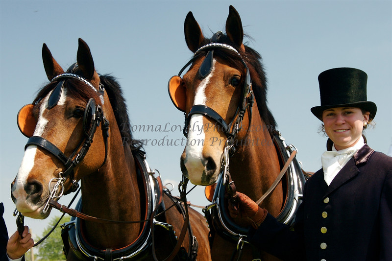 Winterthur Point to Point Carriage Team with Groom (Brooke)
