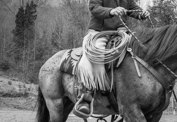 Spring Horsemanship Clinic