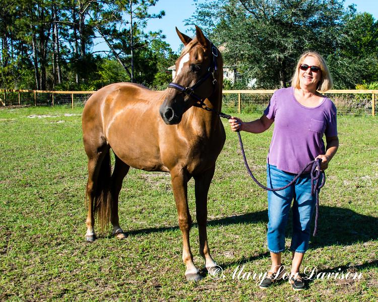 horsesofwedgfield-2208