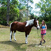 horsesofwedgfield-0712