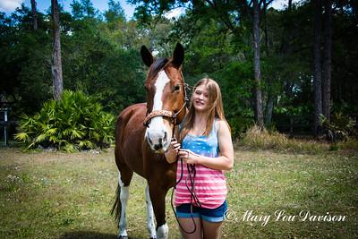horsesofwedgfield-0708
