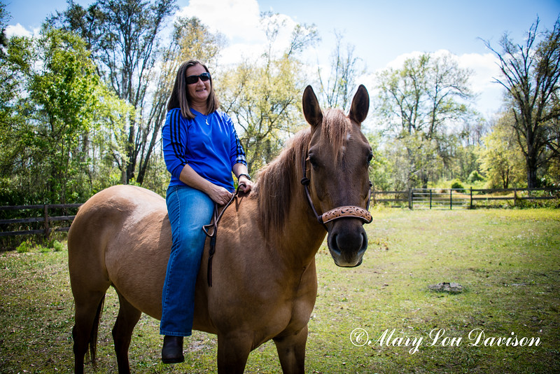 horsesofwedgfield-0878
