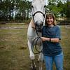 horsesofwedgfield-0964