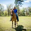 horsesofwedgfield-0906