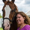 horsesofwedgefield-2010