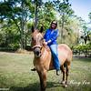 horsesofwedgfield-0872