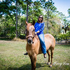 horsesofwedgfield-0869