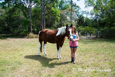 horsesofwedgfield-0709