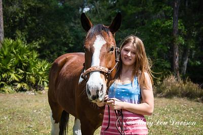 horsesofwedgfield-0703