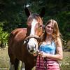 horsesofwedgfield-0702