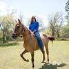 horsesofwedgfield-0902