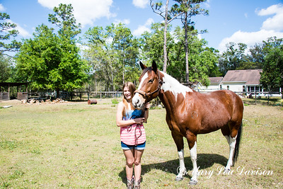 horsesofwedgfield-0719