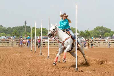 2014 Washington County Fair - Saturday Open Show