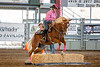 2019_Oct 4_All American Horse Challenge-0695