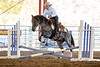 2019_Oct 4_All American Horse Challenge-0715