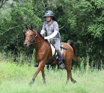 Newly broken Alii, with James Christensen riding (at home) in late 2010.